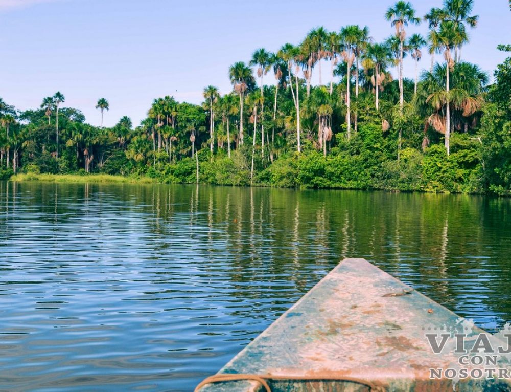 Puerto Maldonado: Lago Sandoval