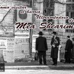 Jerusalén: Ciudad Vieja, Belén, Mea Shearin