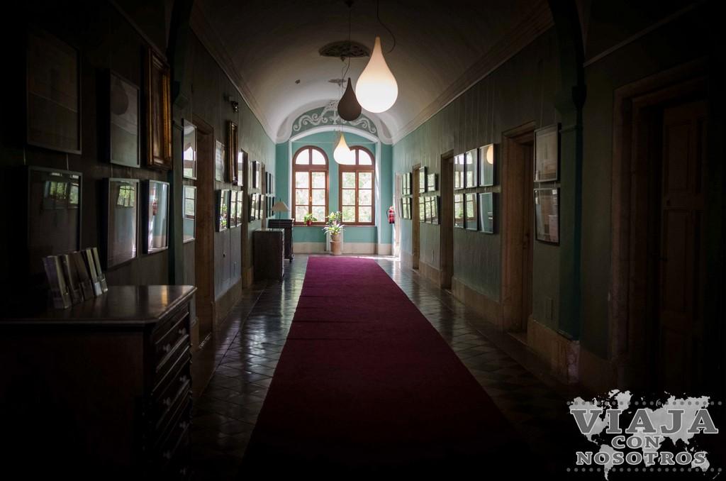 Mejores vistas desde el Hospicio Austriaco en Jerusalen