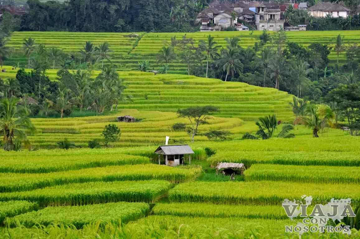 Los lugares más bonitos de Bali