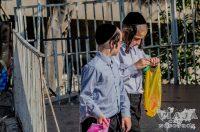 Que ver en Jerusalen en un día