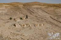Visita al Castillo Qalat Ash Shawbak