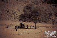 Como visitar el desierto de Wadi Rum