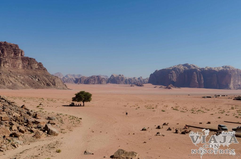 Las mejores fotografias del desierto de Wadi Rum