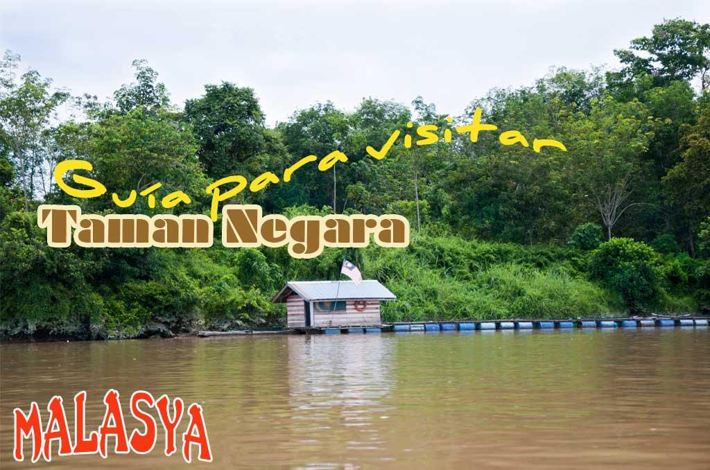 Guía completa de como visitar la selva de Taman Negara.