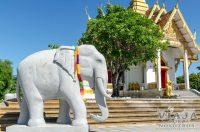 parque thung si muang Ubon Ratchathani
