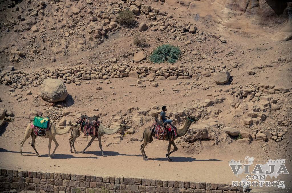 Como llegar al mejor mirador de Petra