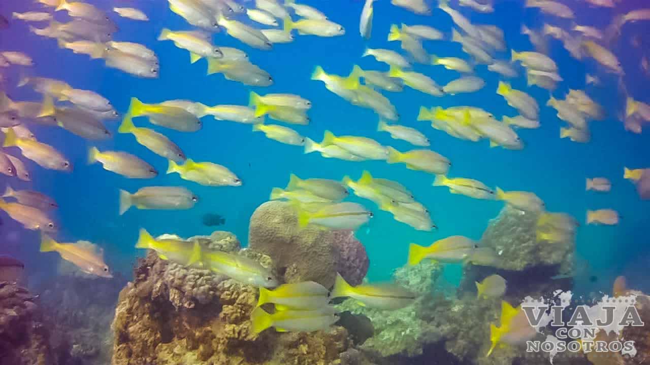 Que hacer en las Islas Perhentian