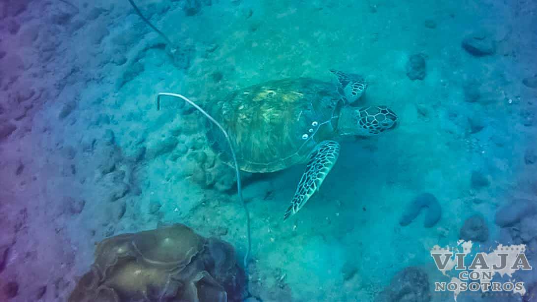 Mejores imágenes de las Islas Perhentian