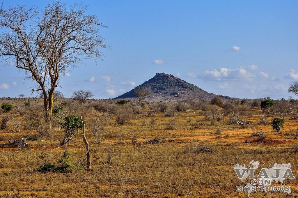Todo lo que debes saber si viajas a Kenia por tu cuenta