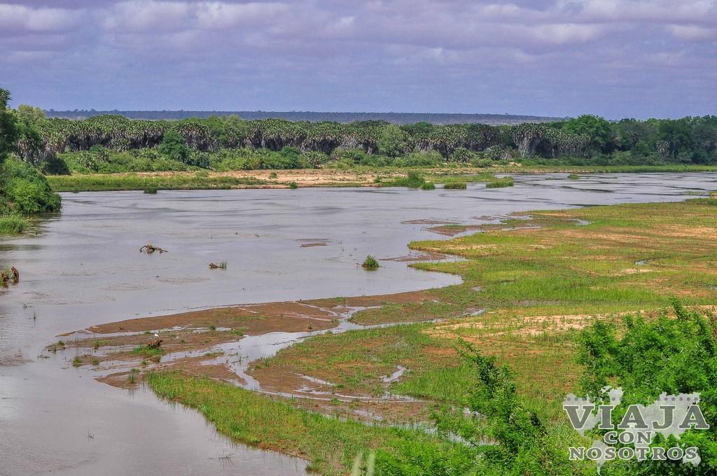 Guía completa del safari Parque Tsavo en Kenia