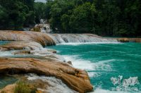 Todo lo que debes saber antes de viajar a Palenque