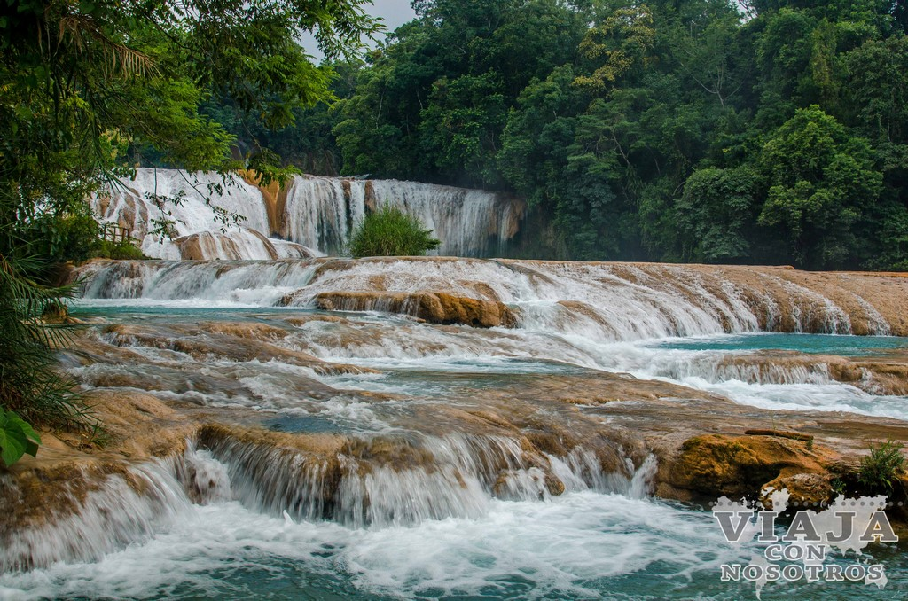 Cascadas de agua azul en Palenque