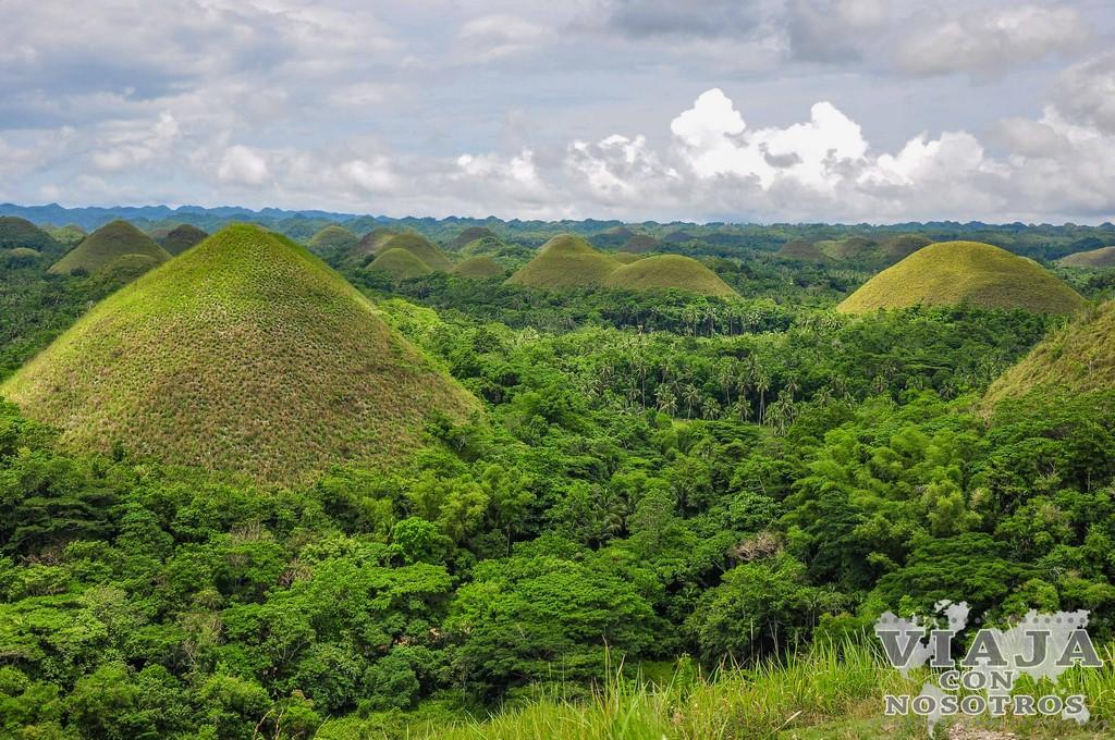 Como visitar las montañas de Chocolate de Bohol
