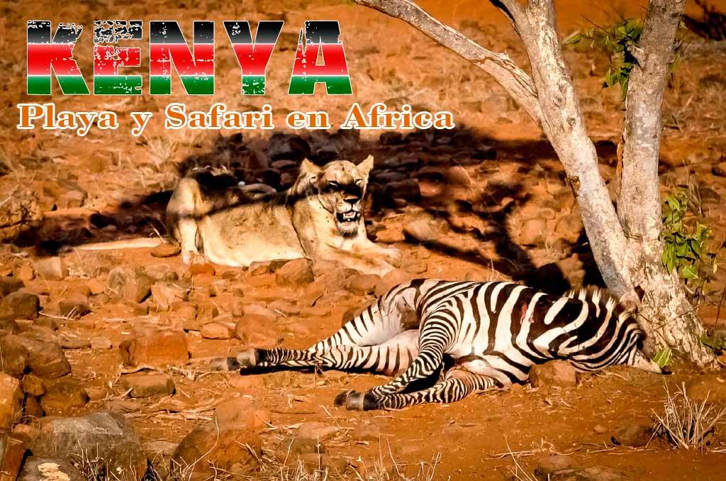 Kenya, playa y safari en Africa
