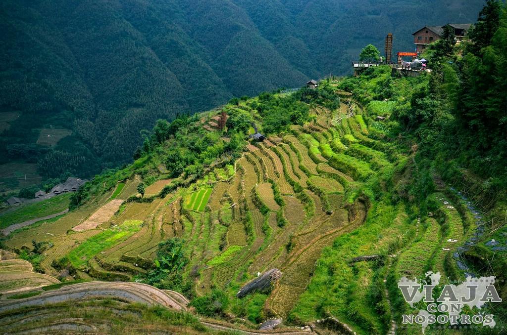 Terrazas de Arroz de Longji (Longsheng)