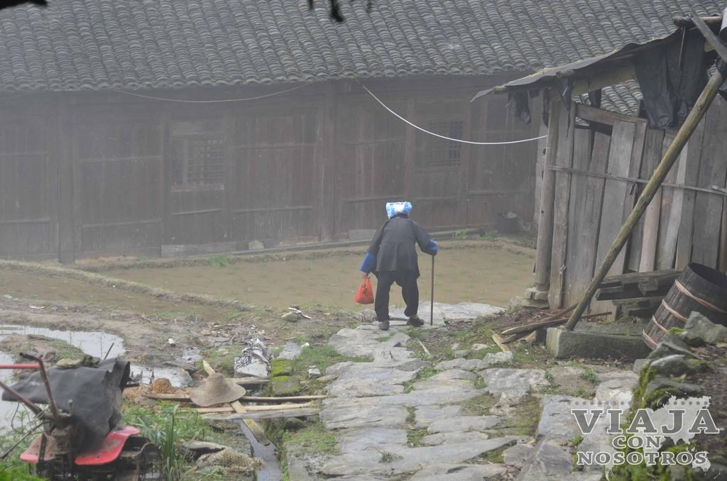 Como visitar los arrozales de Longsheng