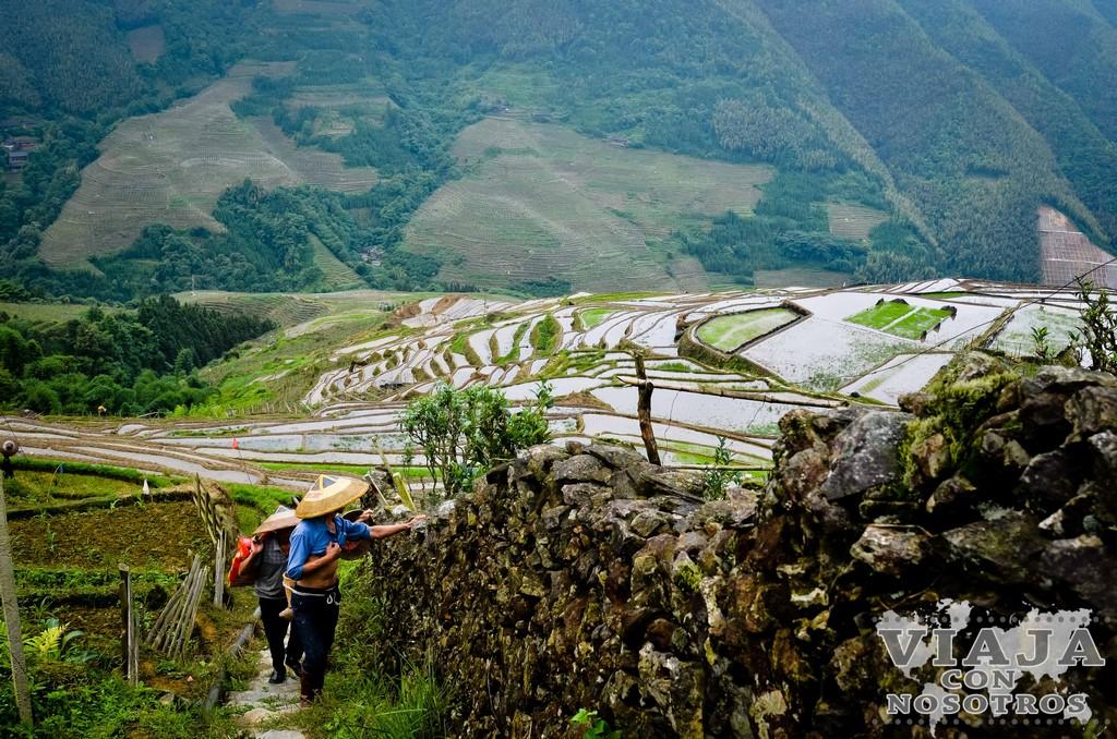 Visita a las terrazas de arroz de Longsheng en China