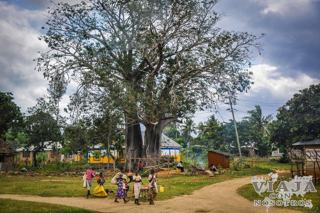 Guía barata para viajar a Kenia de forma barata