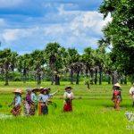 Monywa– Bagan