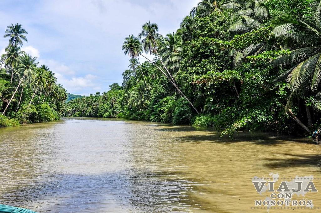 Lugares que visitar en Bohol