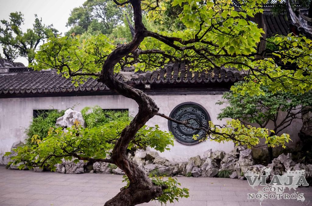 Consejos para visitar Shanghái