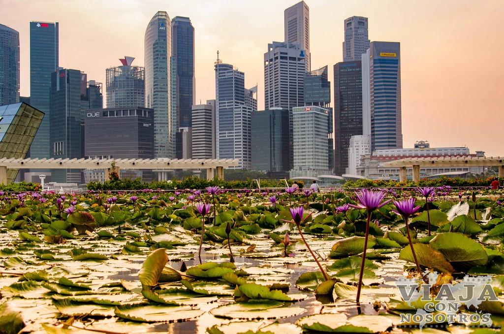Mejores imágenes de Singapur