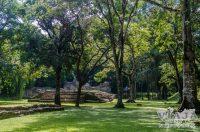 Todas las ruinas Mayas de Palenque