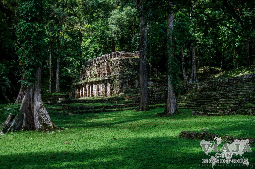 Es peligroso viajar a Chiapas