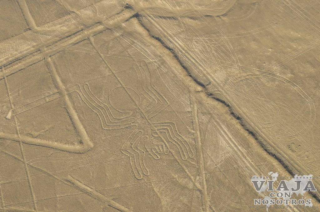Visitar líneas de Nazca: todo lo que quieres saber.