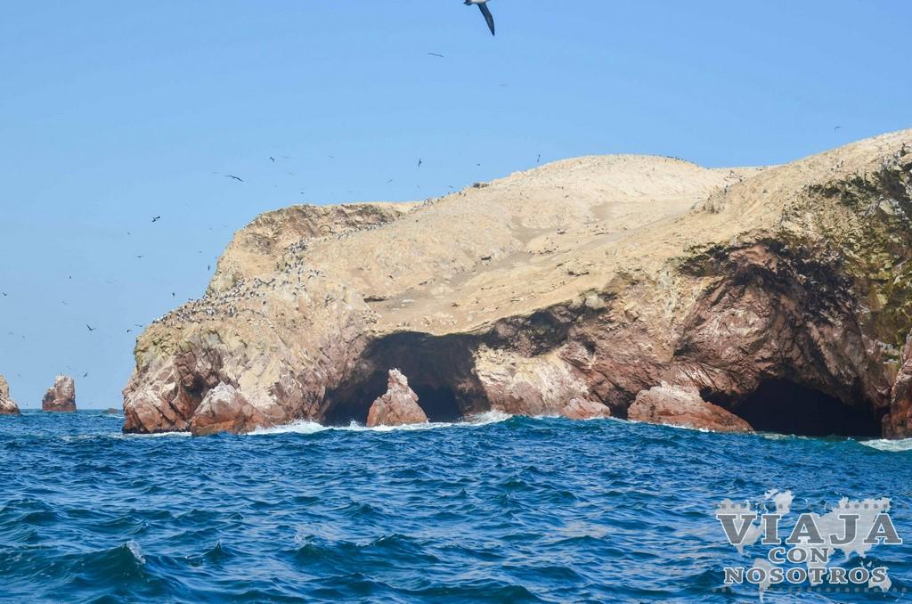 Qué visitar, ver y hacer en Paracas