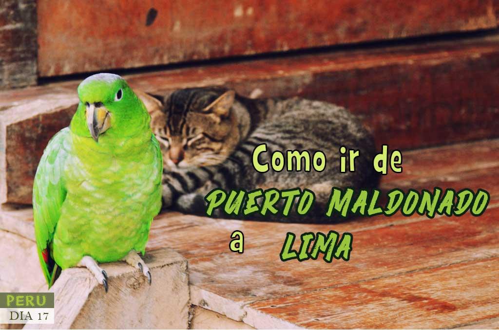 Como llegar de Puerto Maldonado a Lima