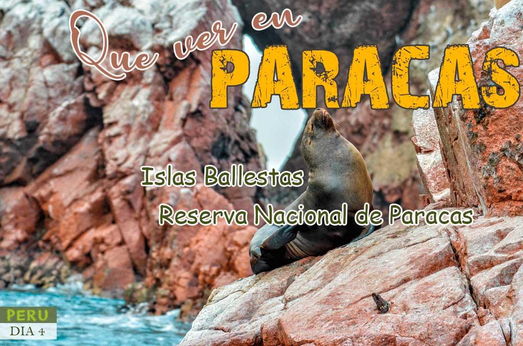 Consejos para visitar Islas Ballestas de Paracas
