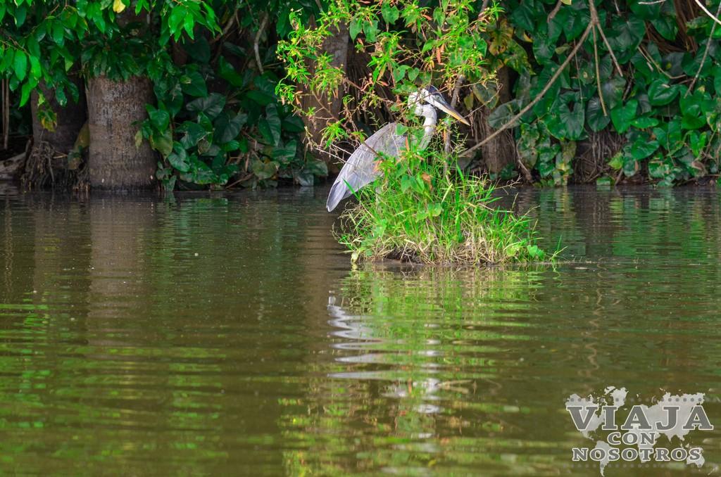 La Reserva Natural de Tambopata y el Lago Sandoval