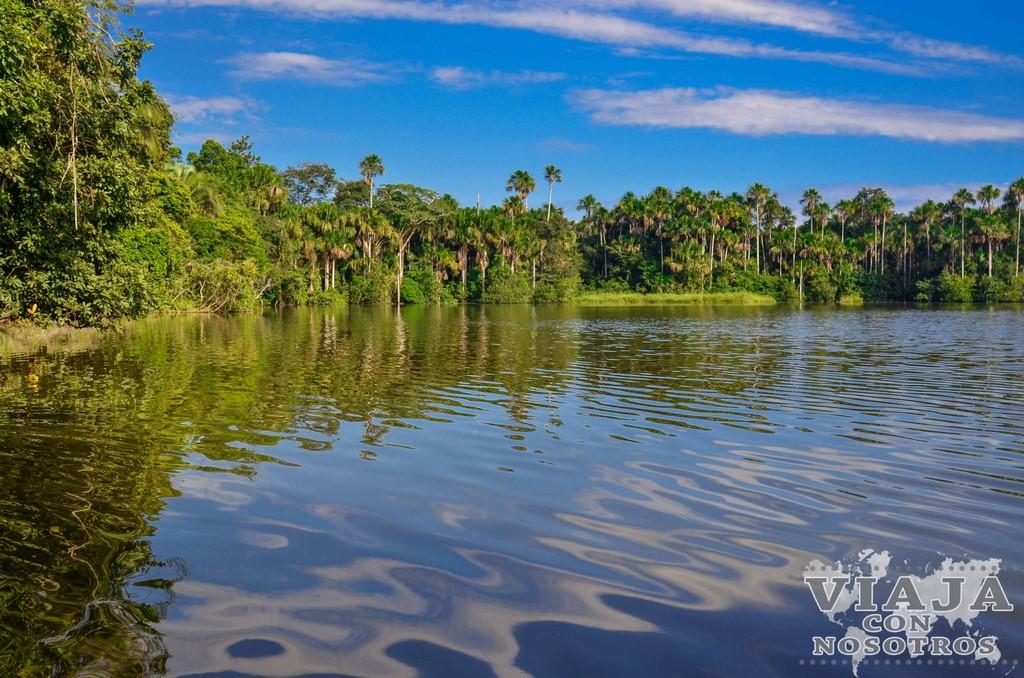 10 mejores excursiones y tours en Puerto Maldonado