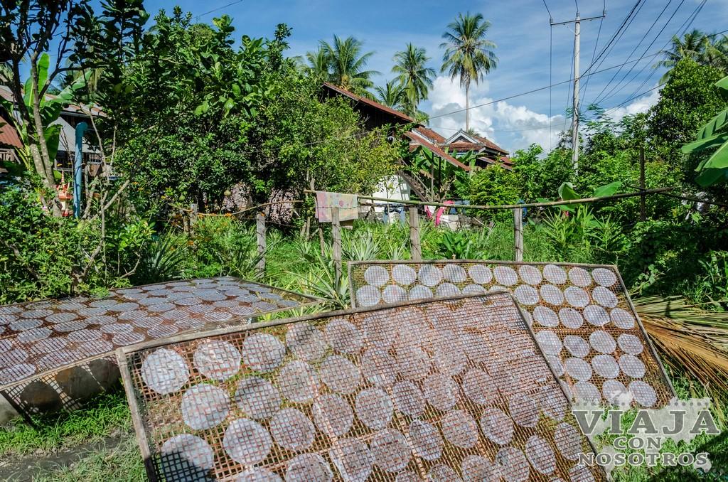 Consejos y recomendaciones para viajar a Battambang