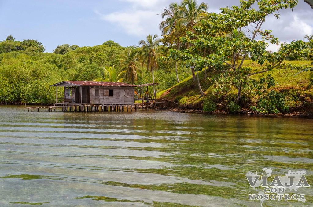 Recomendaciones para bucear en Bocas del Toro