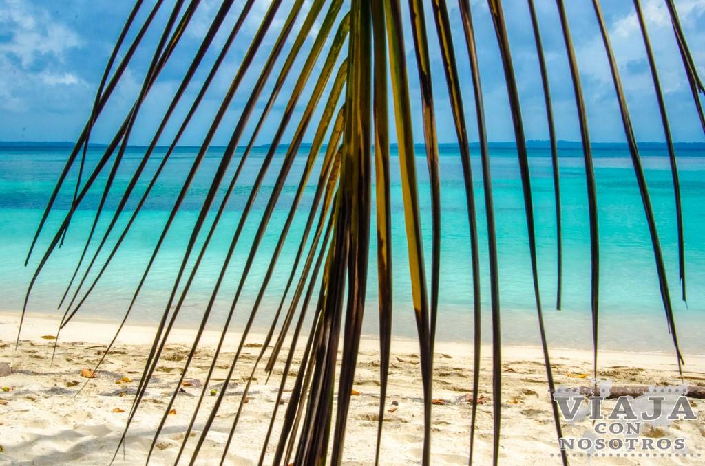 Como recorrer la isla de Bocas del Toro