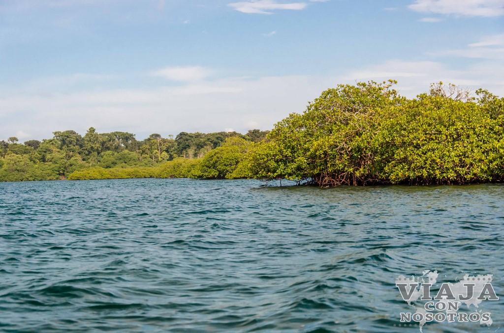 Mejor época para visitar Bocas del Toro