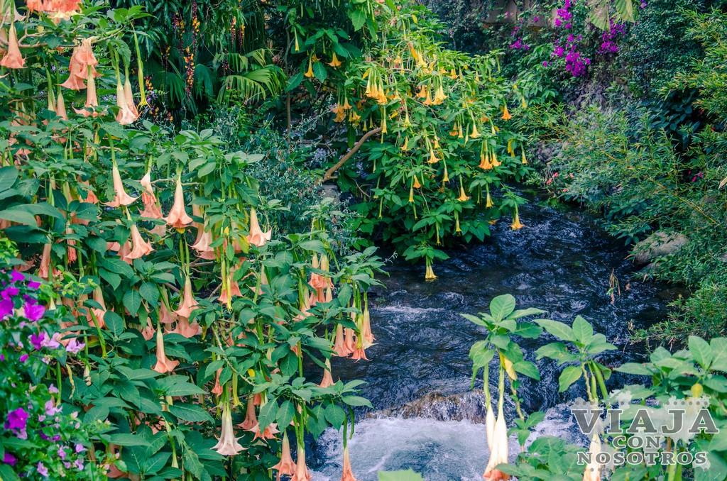 Qué hacer en Boquete y alrededores: volcán Barú