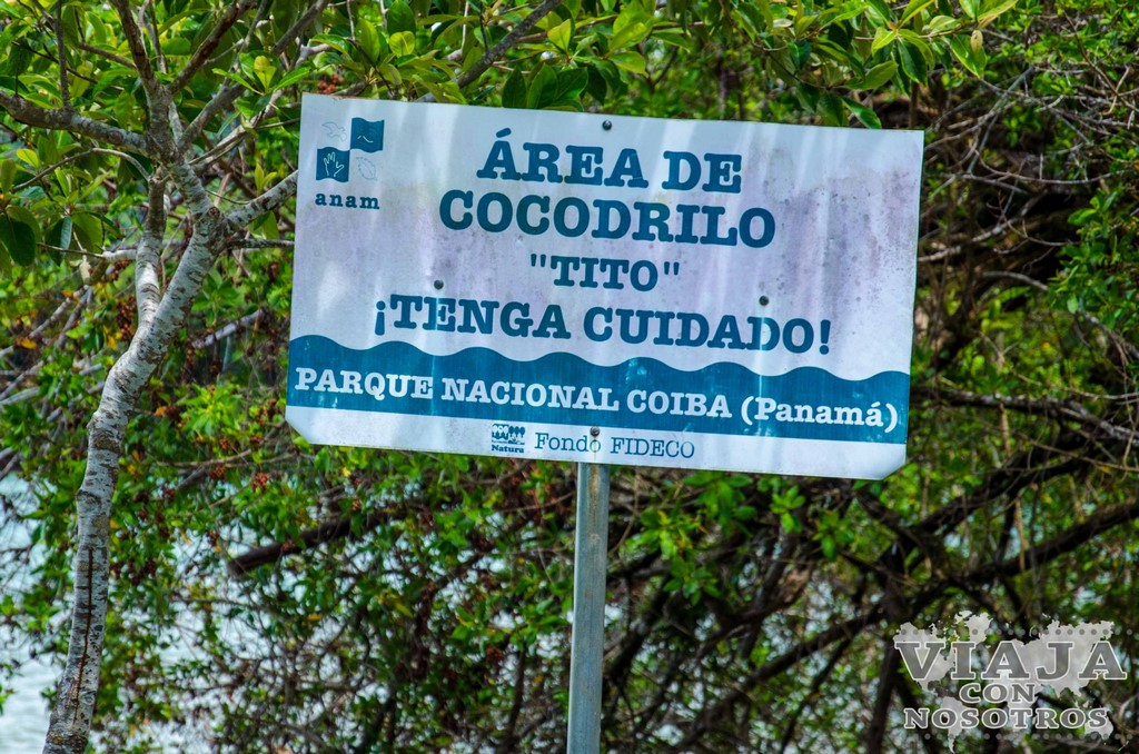 Todo lo que debes saber si viajas a Isla Coiba