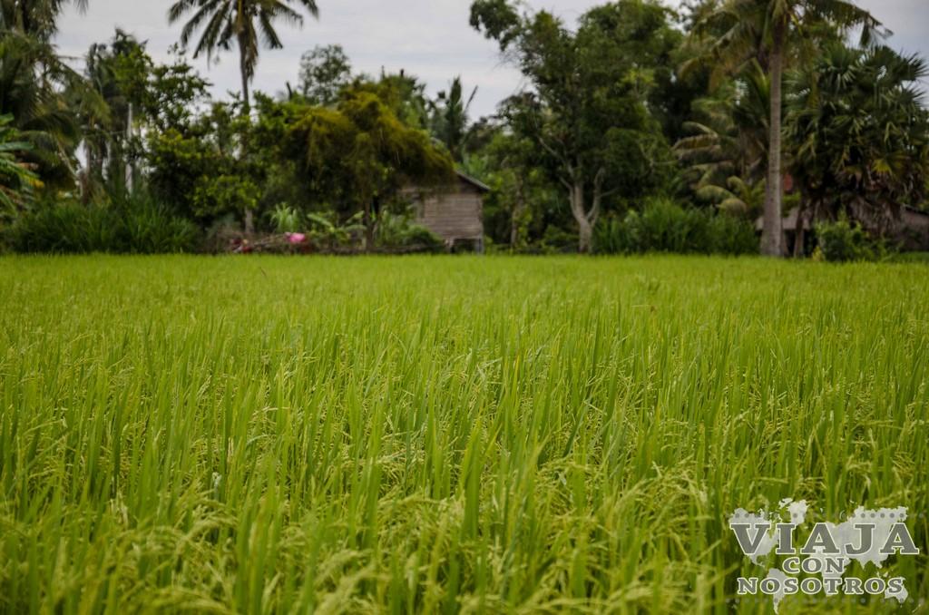 Ruta de viaje a Camboya 15 días
