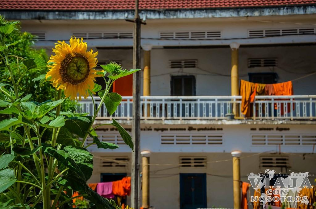 Guía de viaje para viajar a Camboya por tu cuenta