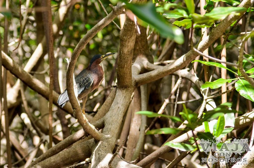 Mejores lugares que ver en los alrededores de León Nicaragua