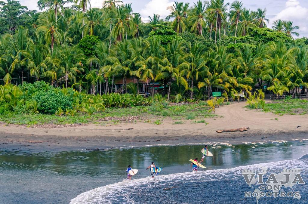 Información para bucear en Isla Coiba