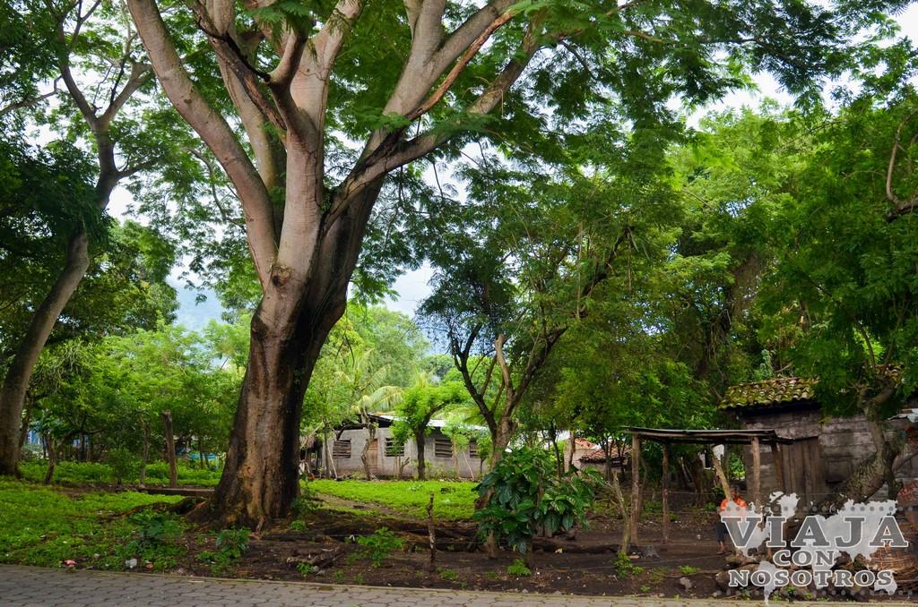 Lugares imprescindibles para ver la Isla de Ometepe