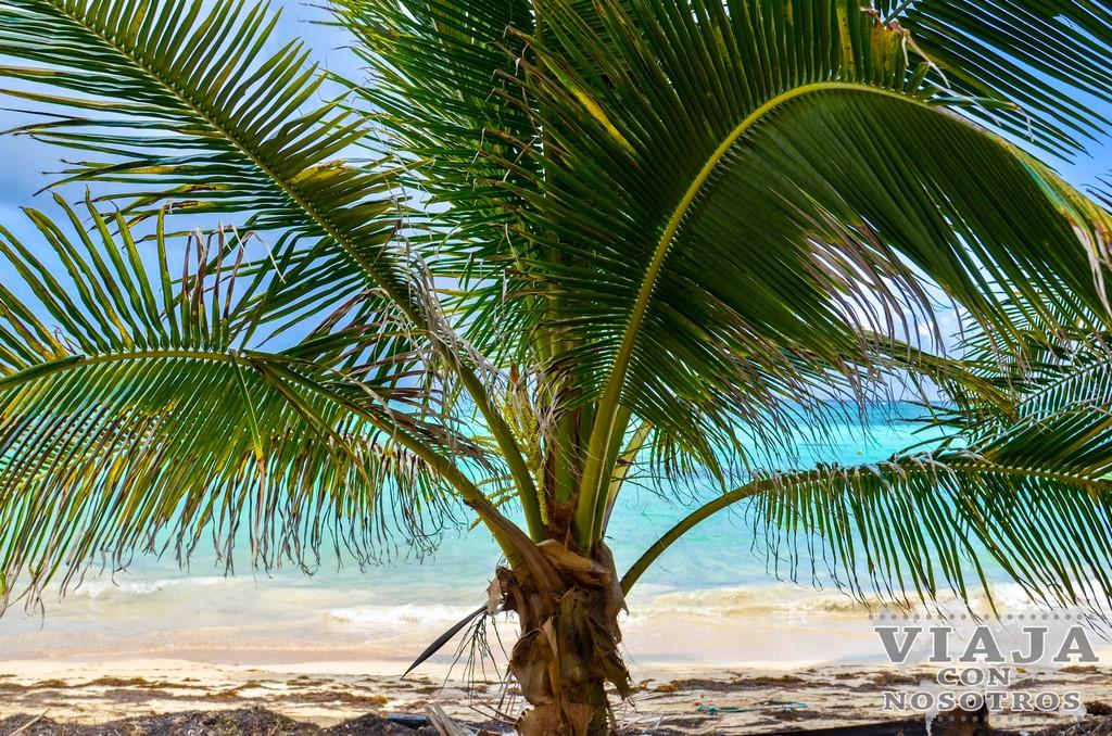 Cual es mejor visitar de las dos islas Corn Island