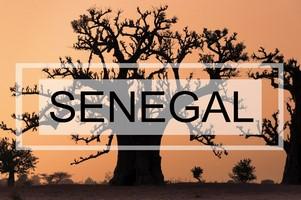 Que ver en Senegal