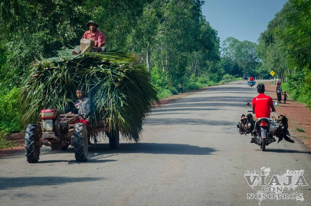 Los templos de Angkor: guía completa para 3 días