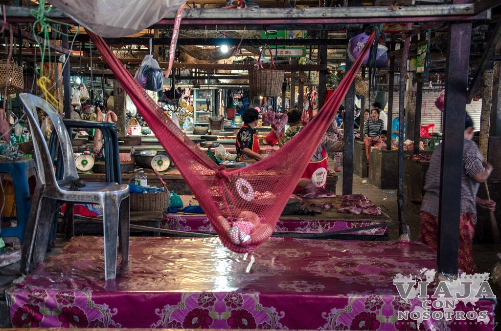 Mejor época del año para visitar Siem Reap